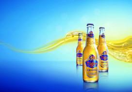бренды, tiger, пиво
