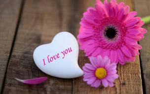 праздничные, день святого валентина,  сердечки,  любовь, цветок, гербера, сердце, любовь, праздник