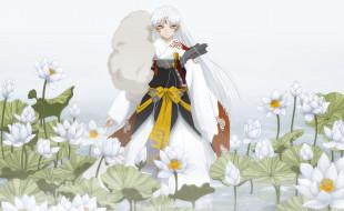 аниме, inuyasha, цветы, парень, лотосы