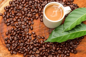 обои для рабочего стола 4012x2675 еда, кофе,  кофейные зёрна, кружка, пена, кофейные, зёрна, листья, стол