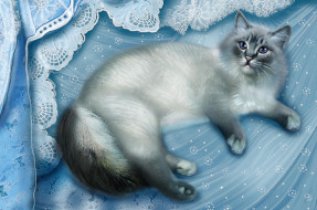 рисованные, животные, кот