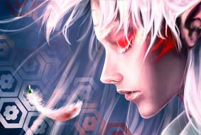 аниме, inuyasha, цветы, бусина, уши, татуировка, профиль, перо, парень, sesshomaru, sscindyss, арт