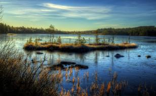 природа, реки, озера, лес, островок, озеро