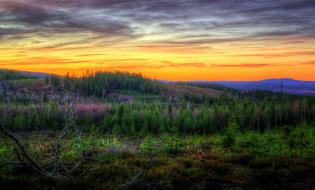 природа, пейзажи, тучи, леса, равнина, зарево