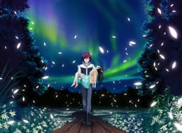 аниме, *unknown , другое, звезды, небо, природа, ночь, парень, девушка, цветы, трава, северное, сияние, деревья, лепестки