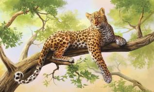 рисованные, животные, дерево, леопард
