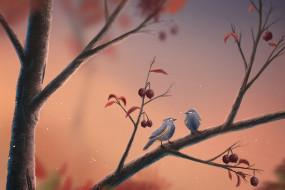 рисованные, животные, ветка, птицы, ягоды