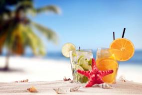 еда, напитки,  коктейль, ракушки, summer, tropical, vacation, beach, drink, пляж, песок, лето, море, отдых, солнце, коктейли, лайм, апельсин