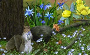 рисованные, животные, цветы, белка