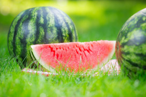 еда, арбуз, cloves, watermelon, grass, nature, дольки, травка, природа