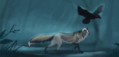 рисованные, животные, собака, ворона