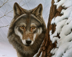 рисованные, животные, волк