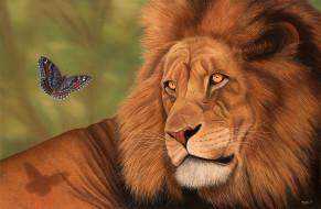 рисованные, животные, лев, бабочка