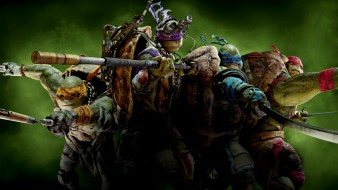 teenage mutant ninja turtles, ���� ������, michelangelo, leonardo, raphael, donatello