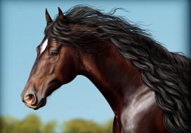 рисованные, животные, конь