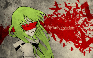аниме, code geass, девушка, код, гиасс, пицо, птицы, зелёные, волосы