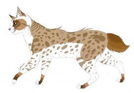 рисованные, животные, белый, фон, животное
