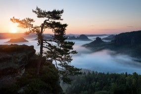 природа, восходы, закаты, лес, туман, утро, небо, эльбские, песчаниковые, горы, саксонская, швейцария