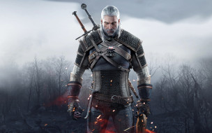 the witcher 3 wild hunt, ����� ����, the witcher 3,  wild hunt, �������, 3