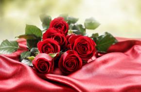 �����, ����, ���, �����, ������, ������, �����, background, atlas, flowers, roses, flower, buds, foliage, bouquet