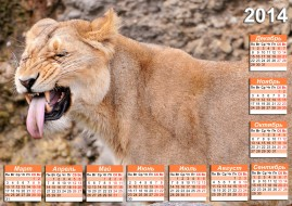 календари, животные, львица, календарь