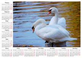 календари, животные, лебеди, календарь
