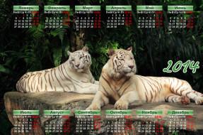 календари, животные, тигры