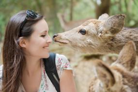 животные, профиль, улыбка, шатенка, лицо, девушка