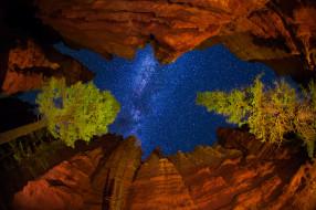 обои для рабочего стола 2048x1365 природа, горы, штат, юта, сша, деревья, скалы, млечный, путь, звезды, небо, ночь, национальный, парк, брайс-каньон