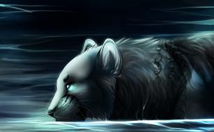 рисованные, животные, зверь, ночь, вода