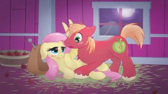 �����������, my little pony, ����