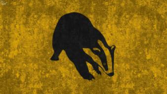 рисованные, животные, зверок, фон