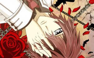 �����, vampire knight, shiki, senri, �������, ����, ����, ����, �������, ����, ��������, �������