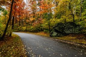 обои для рабочего стола 2048x1366 природа, дороги, шоссе, лес, осень