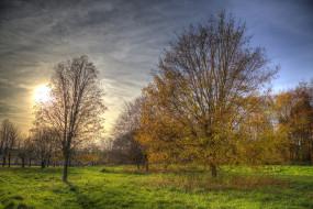 обои для рабочего стола 2048x1367 природа, восходы, закаты, осень, лес, поляна