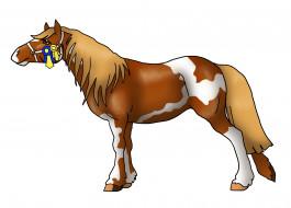 фон, лошадь
