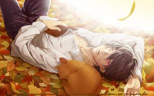 psychic detective yakumo, аниме, shinrei tantei yakumo, листья, кот, парень, глаз, школьник, рубашка, осень