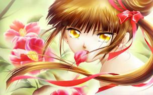 обои для рабочего стола 1920x1200 аниме, vampire princess miyu, цветы, ленточка, волосы, взгляд, лицо, девушка, принцесса, vampire, princess, miyu