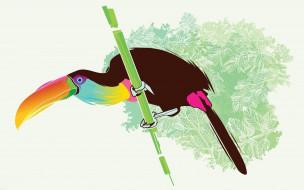 рисованное, животные, птица, ветка