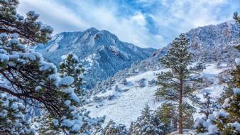 природа, зима, снег, сосны, горы