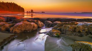 природа, побережье, утро, озеро, камни
