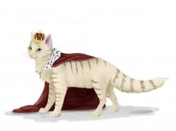рисованное, животные, корона, накидка, кот