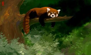 рисованное, животные, панда, ветка