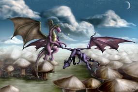 полет, облака, драконы