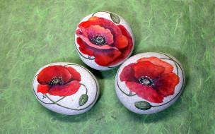 цветы, разрисованные, камни, маки