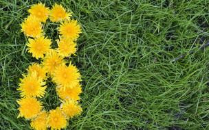 праздничные, международный женский день - 8 марта, 8, марта, женский, день, зеленой, одуванчики, травы, цветы, желтые, на, фоне
