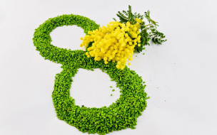 праздничные, международный женский день - 8 марта, цветы, женский, день, 8, марта, зеленый, желтый, мимозы