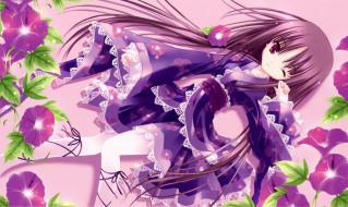 аниме, tinkerbell , artbook, tinkle, арт, девушка, взгляд