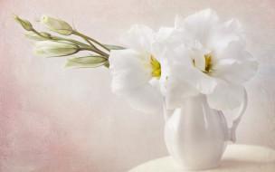 разное, компьютерный дизайн, нежность, ваза, цветы, ветки, обработка