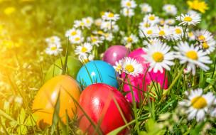 �����������, �����, easter, eggs, flowers, spring, ����, �����, �������